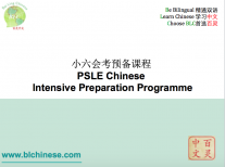 PSLE Chinese Intensive Preparation Programme